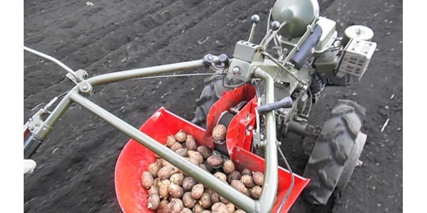 Способы механизации посадки картофеля